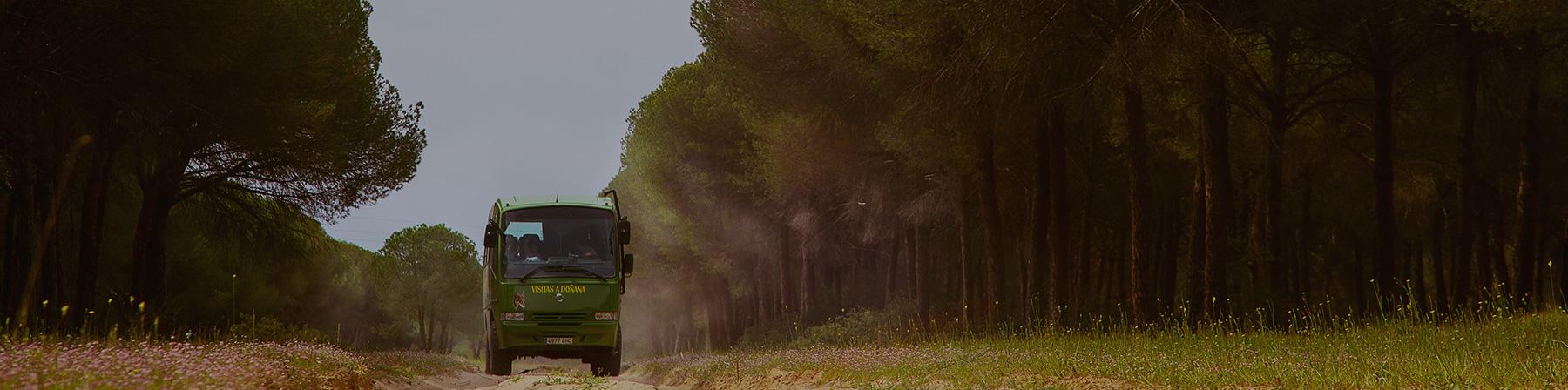 Contact - Doñana Reservas