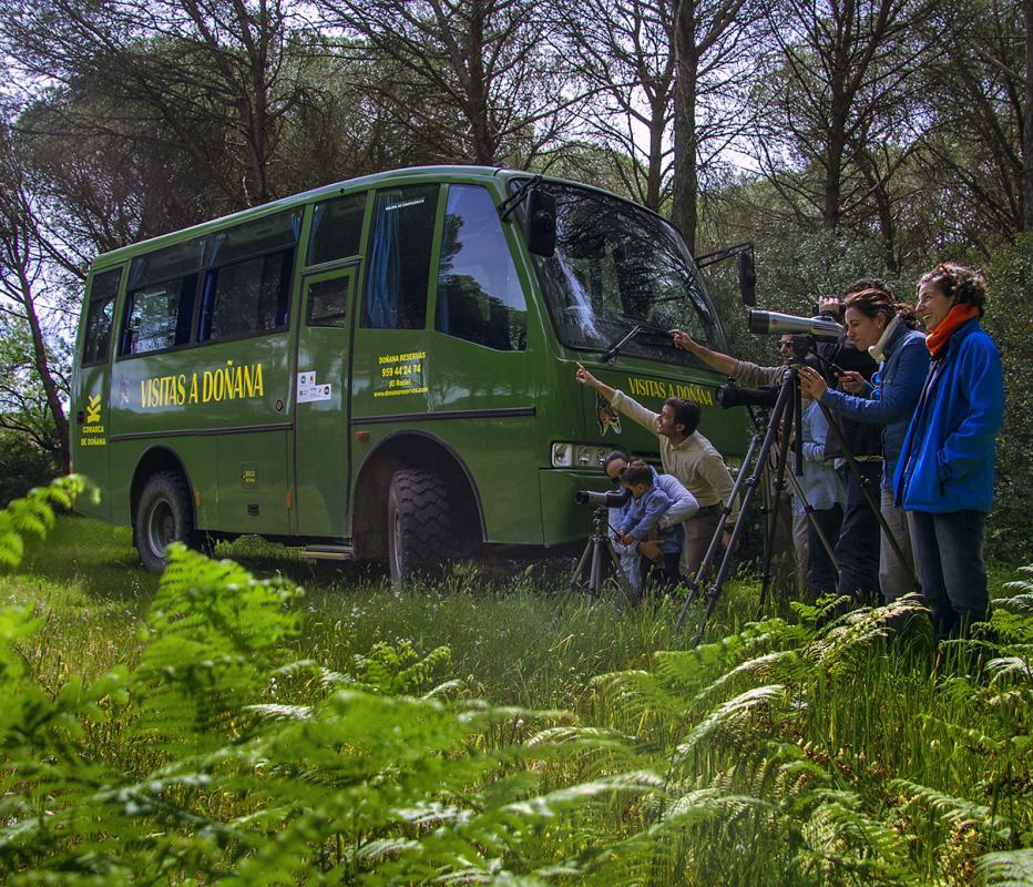 Grupo de excursionistas en Doñana