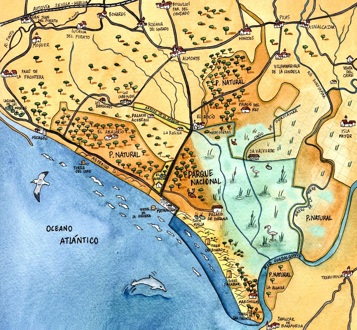 Historia del Espacio Natural Doñana - Doñana Reservas