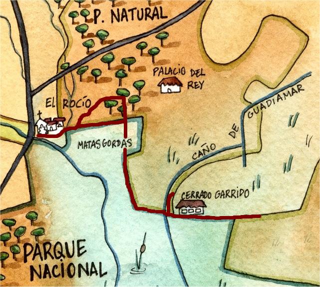 Recorrido Principal de la Ruta - Doñana Reservas